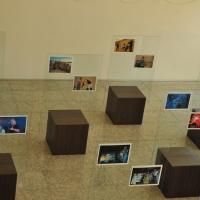 """Exposição """"Produções Musicais da DACC"""""""